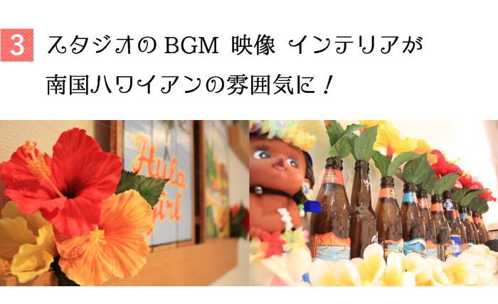 スタジオの映像、BGM、インテリアすべてがハワイアンな雰囲気に!