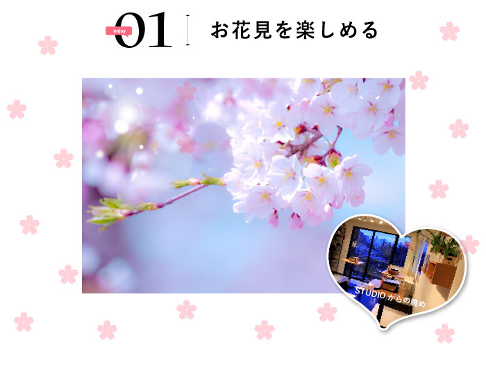 イベント会場からは満開の桜が一望できるんです